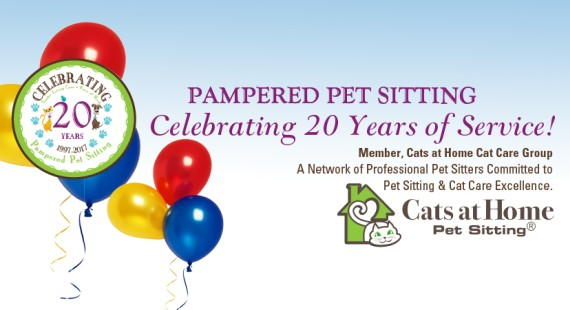 Pampered Pet Sitting Celebrating 20 years