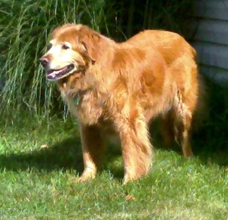 Susie 7-12-11.jpg
