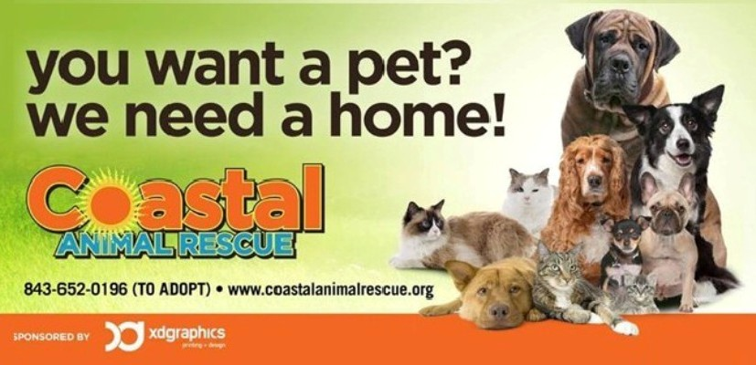 Coastal Animal Rescue