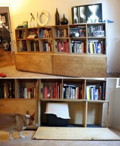 bookshelf_bottom hide litter box