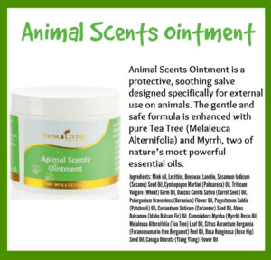 Animal Scent Essential Oil. Ointment jar with Green White Label