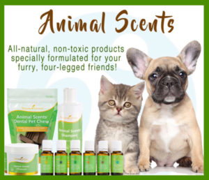 Dog & Cat with displayed Essential Oils brand Animal Scents