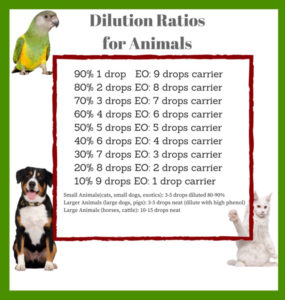 Brown White Chest Dog , White Cat, Green Yellow Bird Dilution Ratios Chart