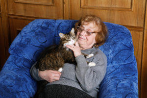 Cuddly Cat right pet for senior lady