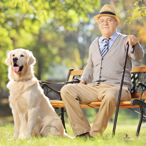 Senior Man bench with dog