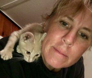 Pet Sitter Knob Noster Sedalia Creme Cat