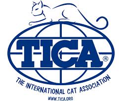 TICA Logo Blue Popular Cat Breeds