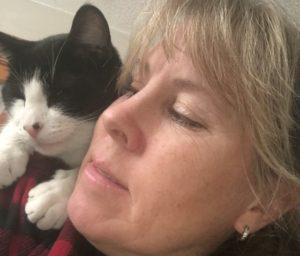 Tuxedo cat near ladies face